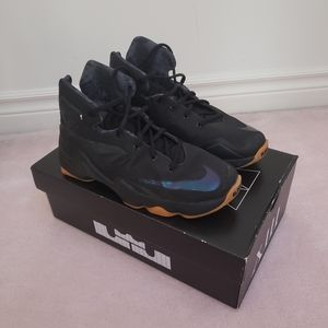 Nike LeBron 13 Black Lion Shoes
